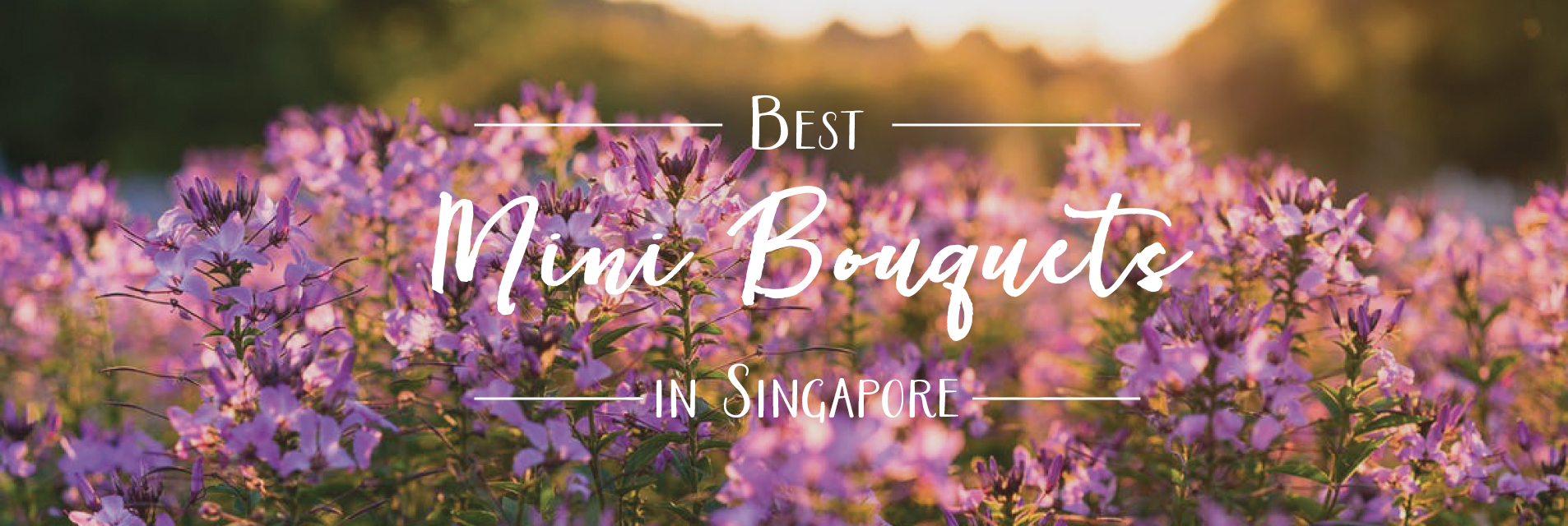 HSingapore's Best Mini Bouquets