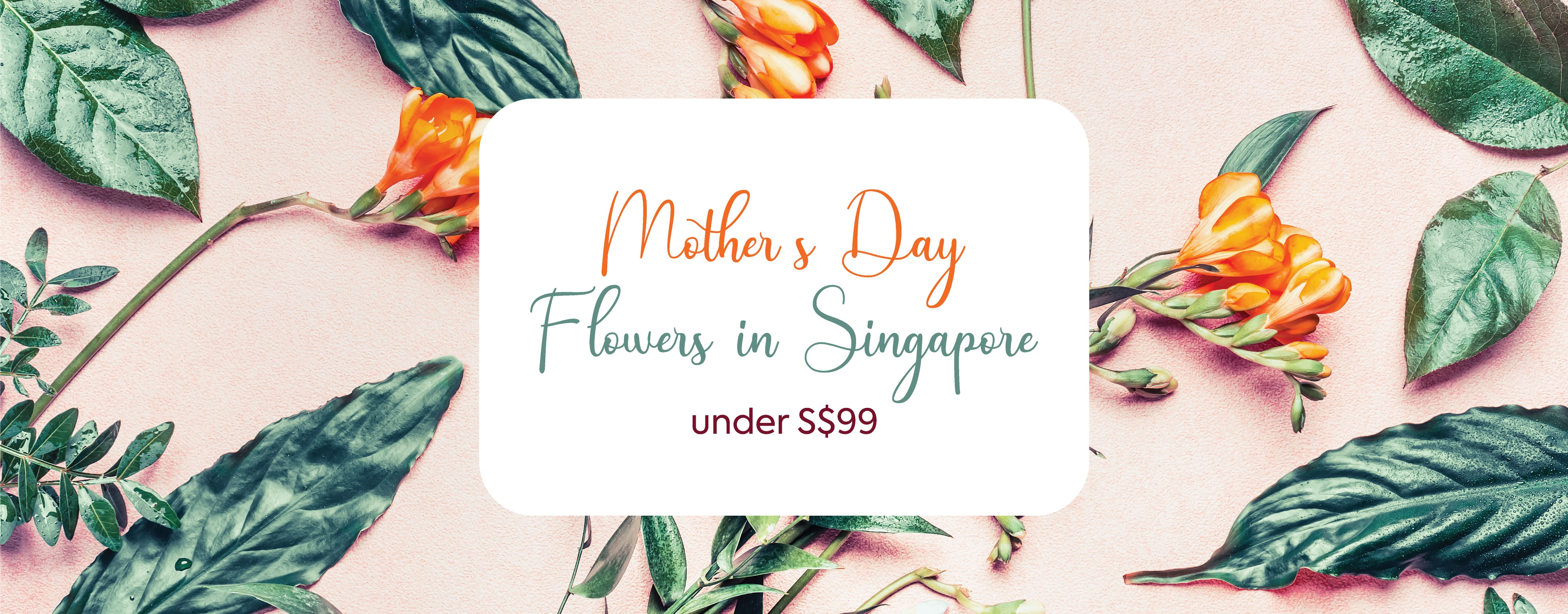 HMother's Day Flowers in Singapore under S$99