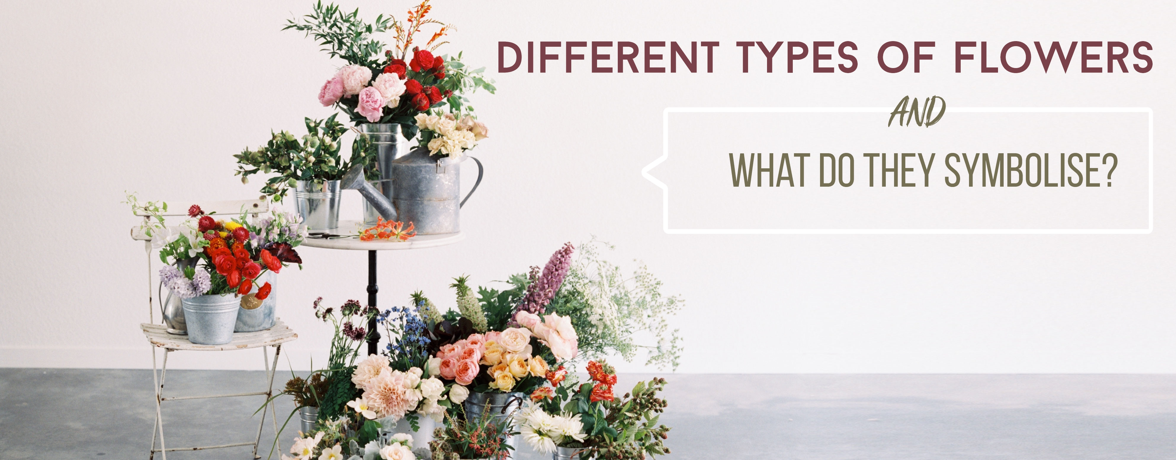 HDifferent Types of flowers and what do they symbolize?