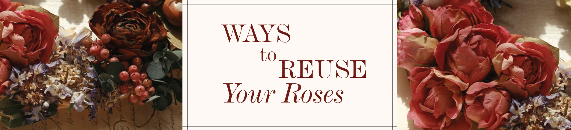 H8 Awesome Ways to Reuse Your Roses as a Practical Spender